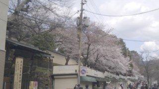 2012-04-07-02.jpg