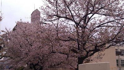 2012-04-14-01.jpg